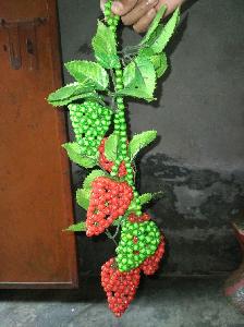 পুথির স্ট্রবেরি